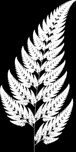 The Barnsley fern